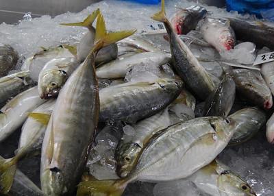 ABU DHABI FISH MARKET
