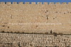 IL 5212  City walls by Jaffa Gate