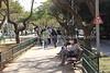 IL 5386  Sderot Rothschild (Rothschild Boulevard)