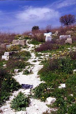 ISRAEL, Tsfat. Jewish Cemetery. (2004)