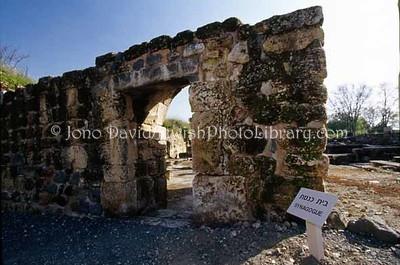 ISRAEL, Banyas. Banyas Ancient Synagogue. (2004)