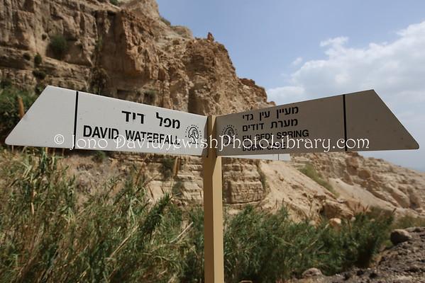 ISRAEL, Ein Gedi. Ein Gedi (3.2015)