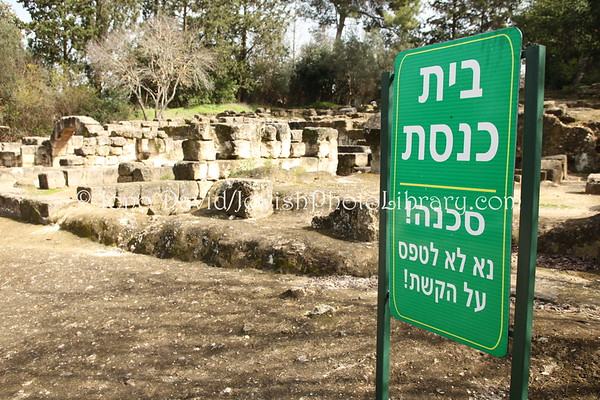 ISRAEL, Bet She'arim: Ancient Bet She'arim Synagogue. (2.2010)