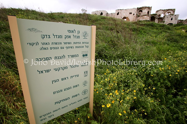 ISRAEL, Rosh Ha'Ayin: Mirabel Crusader Castle. (2.2010)