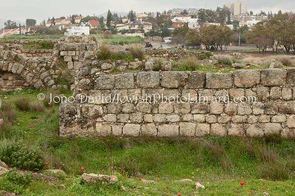 ISRAEL, Beit Shemesh. Tel Beit Shemesh. (3.2012)