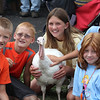 MIDDLETOWN GRANGE FAIR : 1 gallery with 67 photos