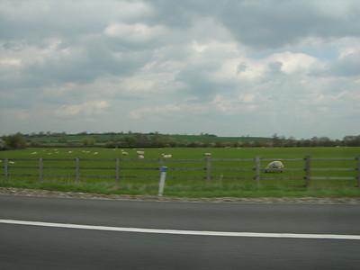 England 769