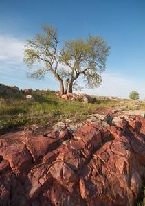 Sioux Quartzite Blue Mounds State Park landscape Rock Co MN IMG_9966
