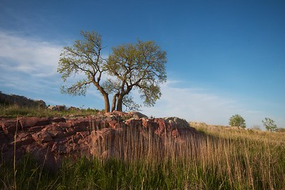 Sioux Quartzite Blue Mounds State Park landscape Rock Co MN IMG_9958 CR2