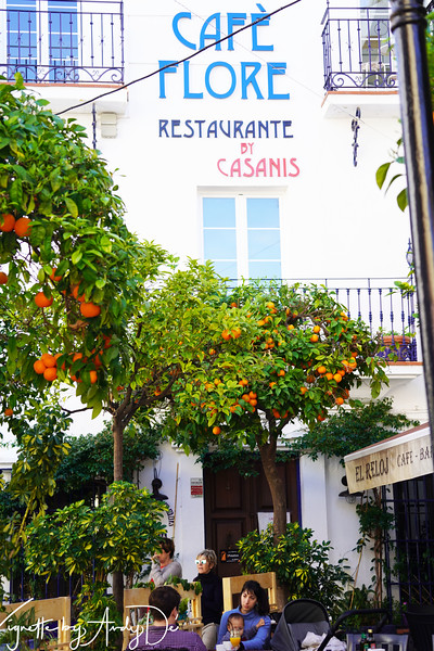 A popular cafe serving Tapas, Coffee, and adult beverages, whose appeal is accentuated by the lovely Orange trees on the porch!
