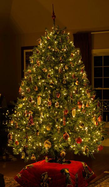 _DSC3175Christmas_Tree_ARI_12_24__17