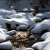 Nameless Creek: January Snow