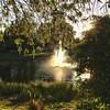 Sarasota Fountain