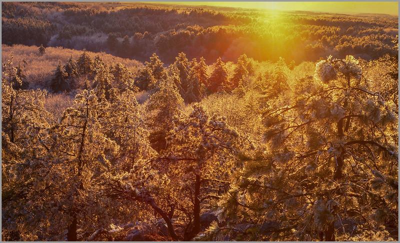 Ice Storm at Sunset VI