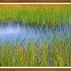 Reeds and Cloud Reflections II