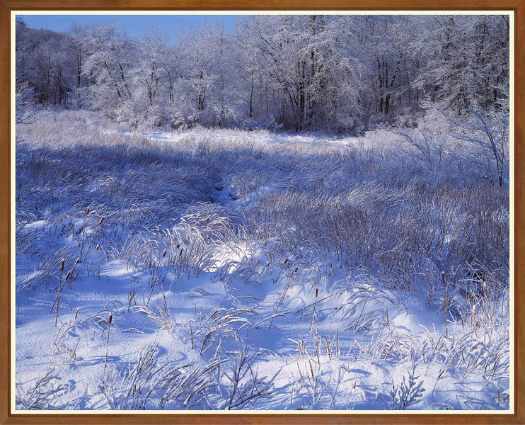 Snow Meadow II