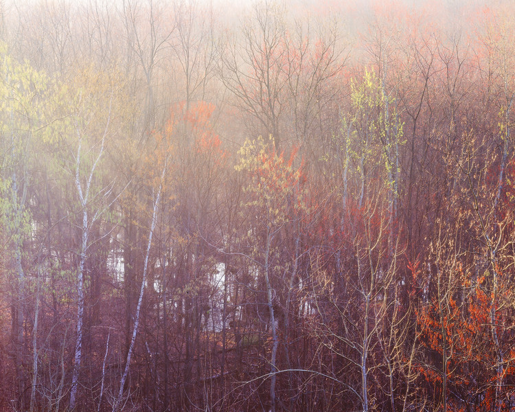 A Fogy Spring Morning on the Pike