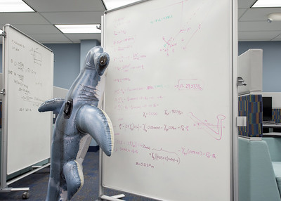 Hunter the Hammerhead diligently works out a math assignment using one of the white boards at the Mary and Jeff Bell Library.  Join us in celebration of Shark Week at Brewster Street Icehouse: http://bit.ly/2taqLoa