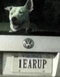 1 EARUP
