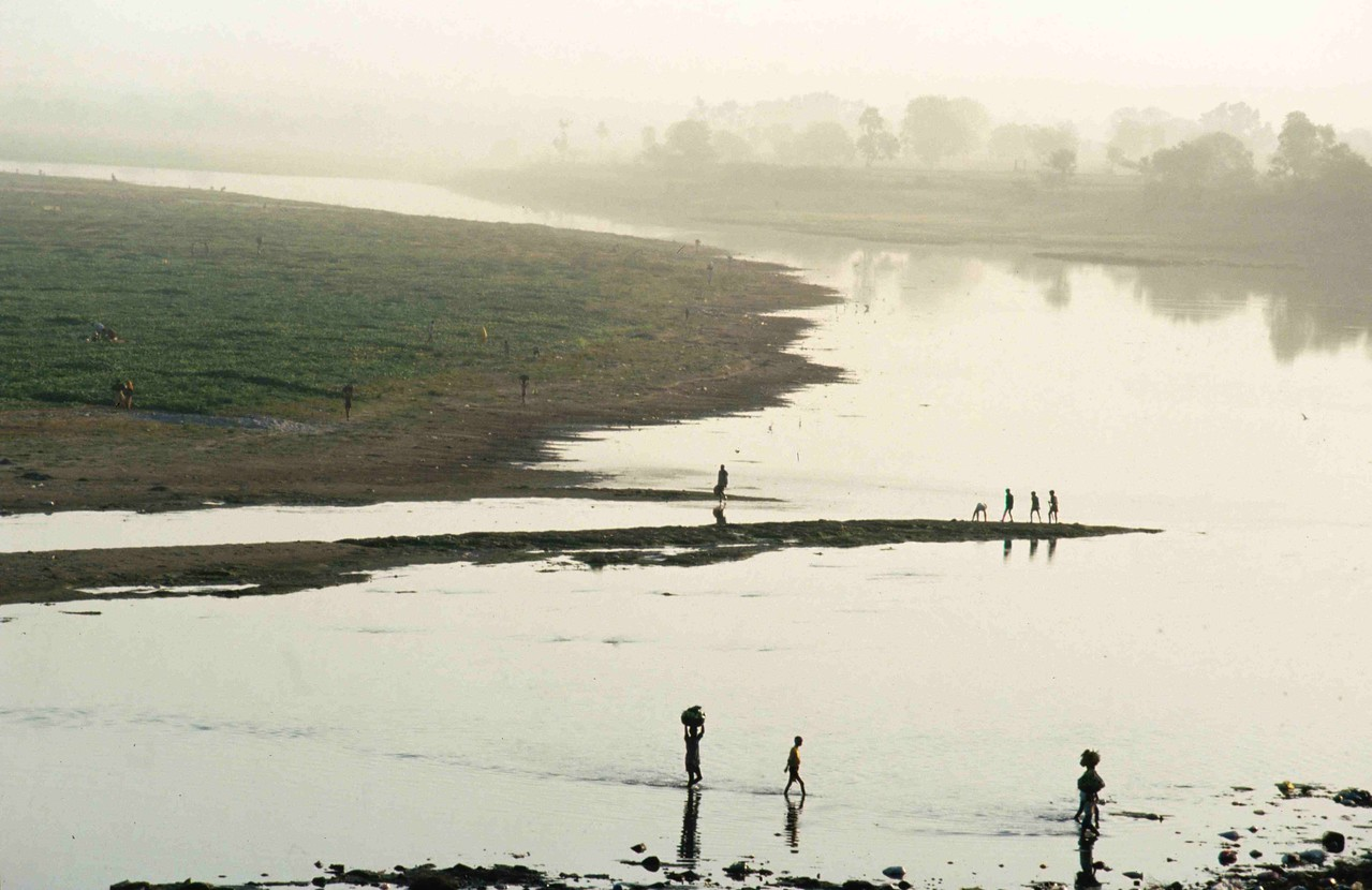 INDIA -Workers 'ferry' betel leaves from their makeshift fields on the banks of Yamuna River, behind the Taj Mahal