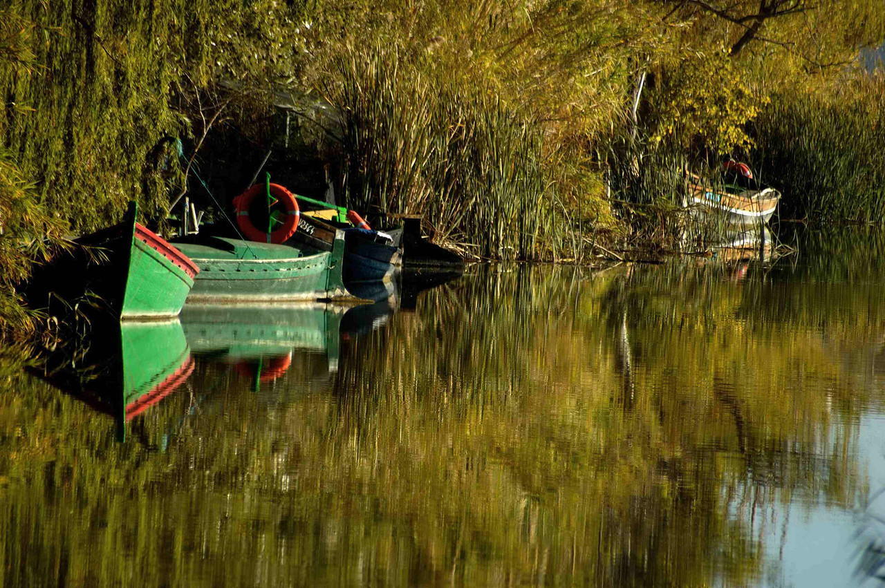 Fishing boats on La Albufera swamps, near Valencia, Spain