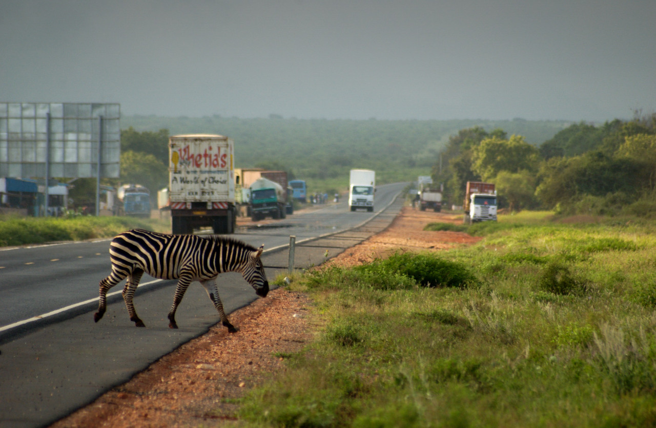'Zebra-crossing' on the Trans-Africa Highway