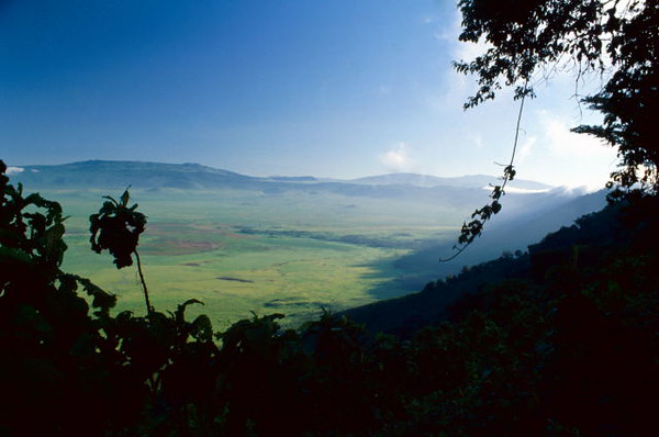 AFRICA -The 'lost world' of Ngrongoro Crater