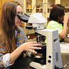 Students find the extinction angle of sample during a Geology lab