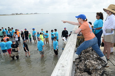 assistant-director-of-harte-research-institute-gail-suttonin-orange-at-right-at-a-oyster-reef-restoration-site_16018311616_o
