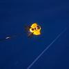 ROV following buoy line 2