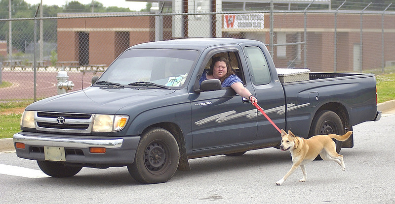 """Seen this lady in a huge school parking lot. <br /> <br /> She seen me taking pics of her and smiled and laughed as she drove by me saying  """"this is how you do it"""".<br /> <br />  I was there for 25 minutes and she was still """"walking her dog"""" when I left... <br /> <br /> Wow is all I can say.."""