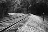 Curve in Tracks Leading to Bostian Train Bridge Statesville NC