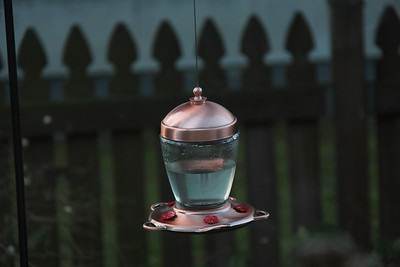 Just the beautiful feeder.  No birds . . . .