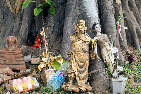 Offerings left at the foot of a banyan tree near Wat Lokayasutharam (Temple of the Reclining Buddha)  © 2012 KT WATSON
