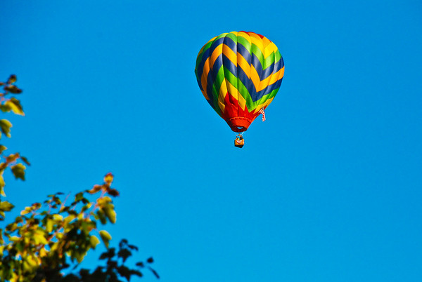 Hot Air Balloon over my house.