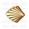Saint James way shell golden metal white isolated