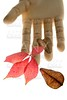 Mannequin wooden hand holding autumn leaves