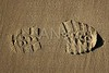 boot shoe footprint over beach sand