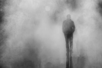 Alone in the Mist  -  Seul dans la Brume  - Px