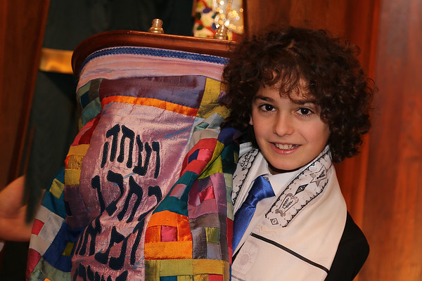 ETHAN'S MITZVAH DAY - JANUARY 20th, 2018