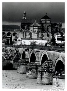 Cordoba, Spain with it's old roman bridge and oldest mosque in Spain.