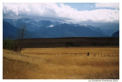 East of Yellowstone, looking towards the Yellowstone mountain range.