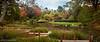 Japanese Garden Path-5883