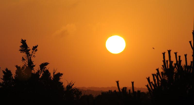 West Hampton Sunset