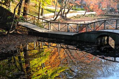 Cedarmere Bridge