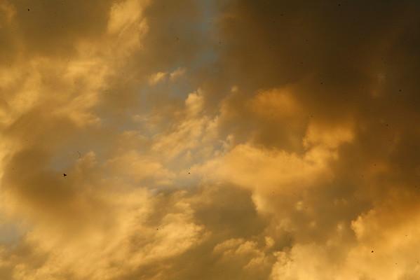 Sunset 9/29/2010