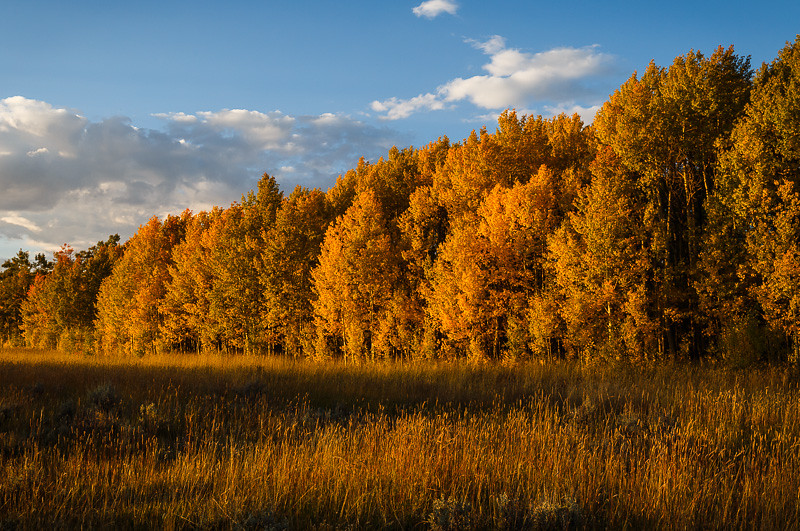 Medicine_Bow_Mtns_Colorado_Sept-2014_6D_020