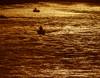 Sandy_River_1-28-10_5d_014