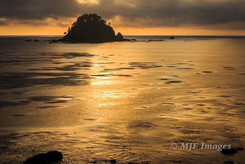 Sea Stack in Gold II