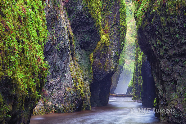 The Narrows of Oneonta